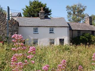 Rhine Cottage Cosy Cottage in Welsh Village
