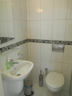 Ensuite downstairs bathroom with shower