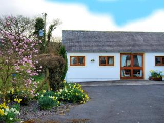 Dinefwr cottage, Llandeilo