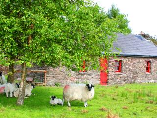 Barralach farmhouse