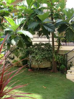 landscaped garden with shade
