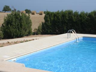 Our private 10 x5 metre salt water swimming pool
