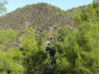 Pine Forest Cottage for family, friends, couples., Limassol