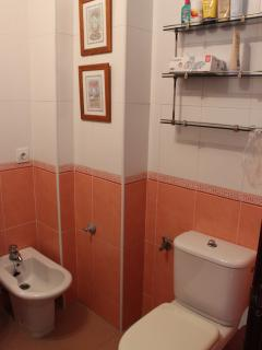 Bathroom 1 - Large family bathoom with Bath/Shower, Bidet, Sink, Toilet