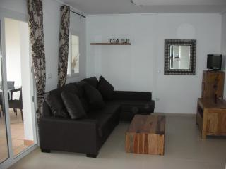 Comfortable living area with leather corner sofa bed