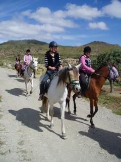Horses from Rancho Luz Del Sol