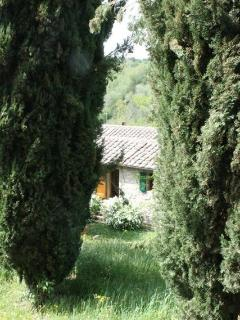View of Apartment through the Cypresses at Gate No.1