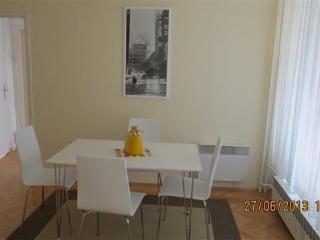 Sunny, spacious modern apartment