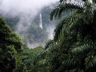 CASA de EDEN, La Ceiba