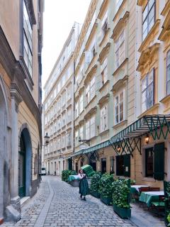 ANother view of the Kurrentgasse and our building. The whole area is pedestrian.