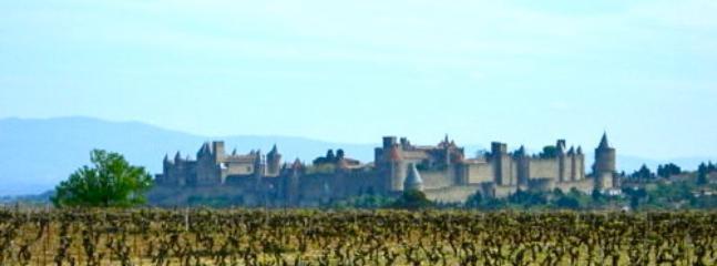 Carcassonne Cite.