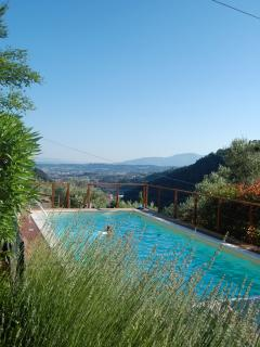 View of Pescia from the pool