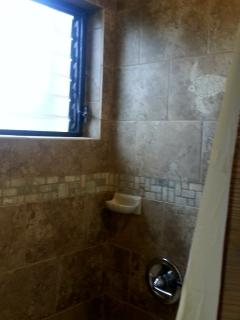 Newly tiled shower over tub with turtle accents