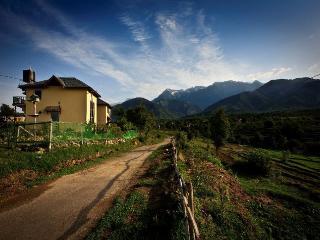 Seclude Palampur, Himachal Pradesh