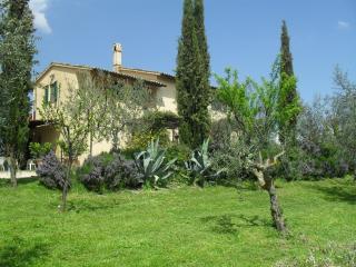 Casa Olivo C, Bevagna