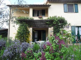 Casa Olivo D, Bevagna