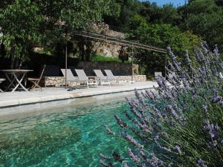 Comfortable mansion of Provence with pool, Cotignac