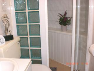 Separate shower room with walk in shower, toilet and vanity unit.