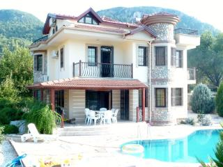 Fig Tree Villa, Uzumlu sleeps 8, private pool, Yesiluzumlu