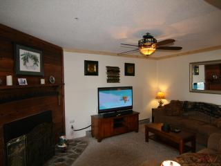 Best Rates on the Mountain! New Remodeled Condo, Snowshoe