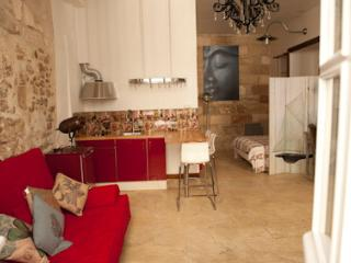 Lovely, recently-renovated apartment in the historical heart of Avignon, sleeps 6