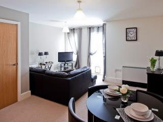 Open Plan City Living at St Maurices Court, Holiday Rental, York