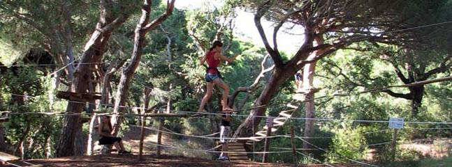 Tree Top Walking & Paintball Fun