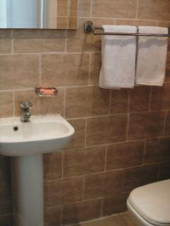 Family bathroom with Walk in shower, WC & wash basin.