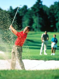Great Golfing 10 minutes away!