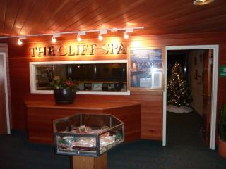 Snowbird Cliff club weekly Rentals