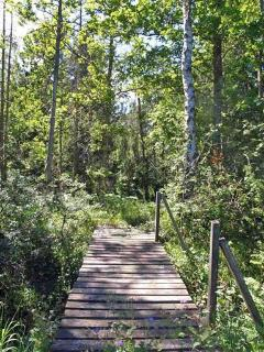 From the garden leads this bridge right into the woods, a national reservation park.