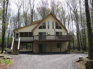 Modern Gem 5 bd Lakefront- Pool Table, bar, DOCK!, Lake Ariel