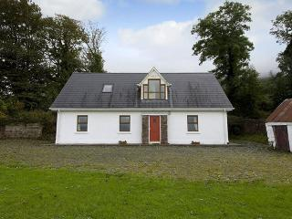 Galbally - 7727, Knocklong