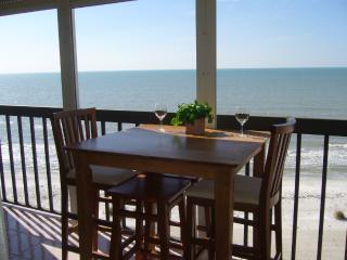 Beachfront Oceanview Condo-Only by the Month, Indian Rocks Beach