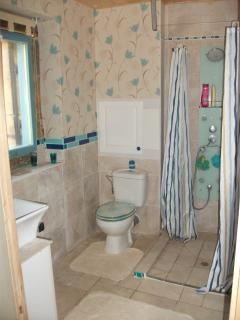 shower and toilet in downstairs shower room (accessible or wheelchairs)