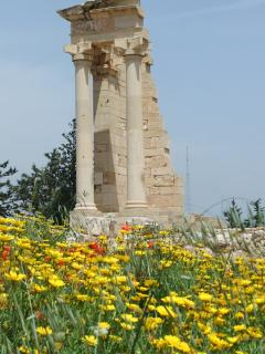 Kourion in spring - May is a great time to visit