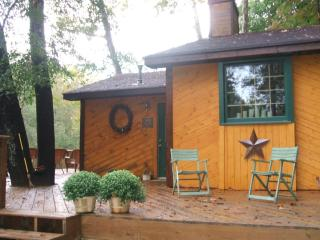 ADORABLE CABIN ON CHESTATEE RIVER, Dahlonega