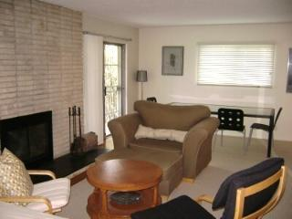 Large Silver Lake studio with fireplace and deck, Los Ángeles