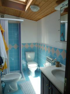 Etna's shower room