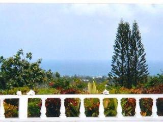 Villa Swarm, Montego Bay, Jamaica. Welcome Home