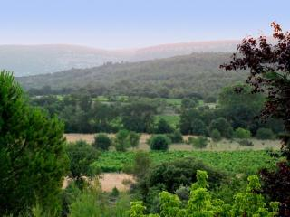 View of countryside from garden