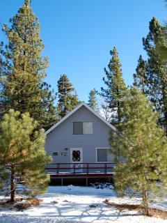 'Colusa Pines'