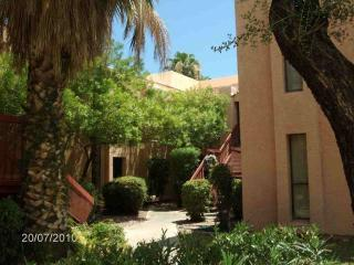 Affordable 1BR Phoenix North--Near shopping mall