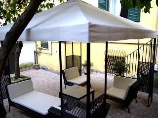 The courtyard. 485 square feet with outdoor furniture under a big gazebo covered by a lemon tree
