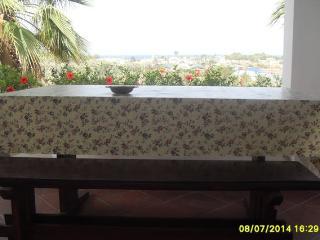 the landscape from the veranda