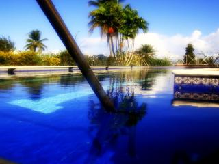 Villa Petrus, Tobago