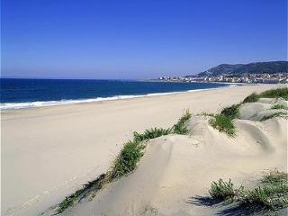 Beach&Forest- Viana do Castelo