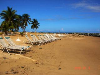 Great Price! Ocean View Villa by Embassy Suite, Dorado