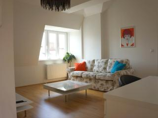 Nice roof-top 2 bedroom apartment, Wien
