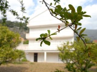Villa Marina, Slano